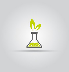 chemical flask and green leafs isolated icon vector image