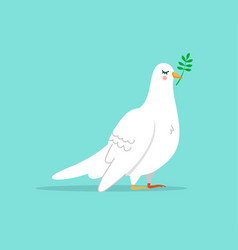 cute white dove bird isolated vector image