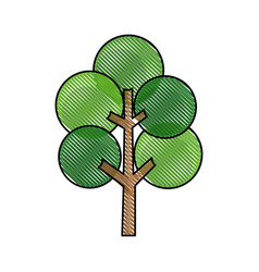 drawing tree round branch stem trunk image vector image