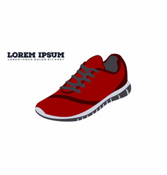 ordinary sports shoes vector image