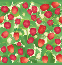 strawberry pattern berry seamless background vector image