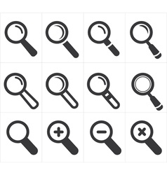 icon search and magnifier vector image