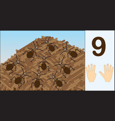 Ants number 9 nine learning counting mathematics vector