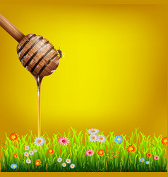 Honey dipper vector