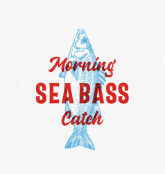 morning catch sea bass abstract sign vector image