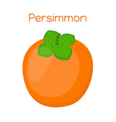 Persimmon tasty vegetarian fruitsweet exotic food vector