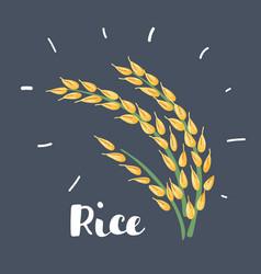 rice icon on dark background vector image