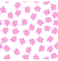 Sakura pattern on white background vector