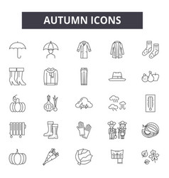 autumn line icons for web and mobile design vector image
