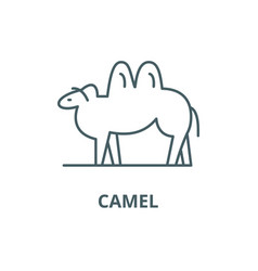 camel line icon camel outline sign vector image