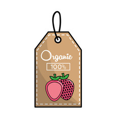 Label organic delicious strawberry icon vector