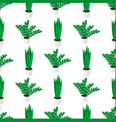 seamless creative pattern potted home plants vector image