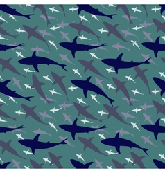 Shark tile vector image