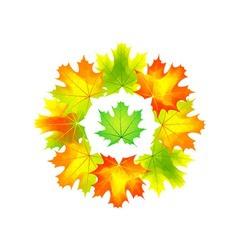 autumn round vector image
