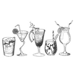 decorated tropical exotic alcohol cocktail set vector image