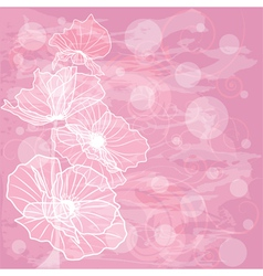 Flowers of poppies vector