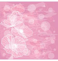 Flowers poppies vector