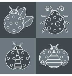 Gray ladybug with white stroke on background vector image