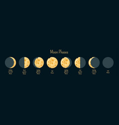 Moon phases infographics vector