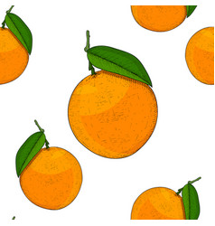 oranges as seamless pattern hand drawn colored vector image