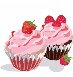 Raspberry and Strawberry cupcakes vector image