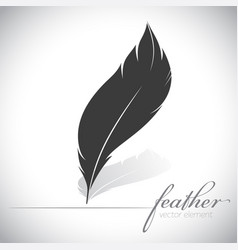silhouette feather icon logo card light background vector image