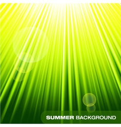 Summer sunburst on green background vector