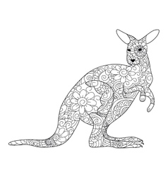 kangaroo Coloring book for adults vector image vector image
