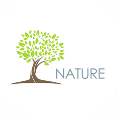 tree nature eco logo vector image