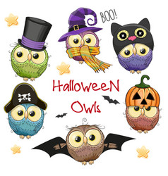 Six cute halloween owls vector