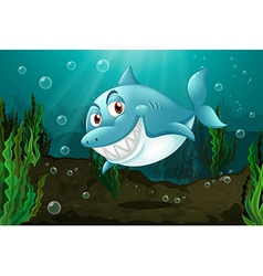 A smiling shark vector image vector image