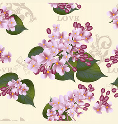 Beautiful seamless floral pattern with lilac vector