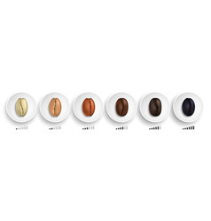 coffee roasting guide realistic coffee beans in vector image