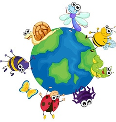 Different bugs around the world vector image