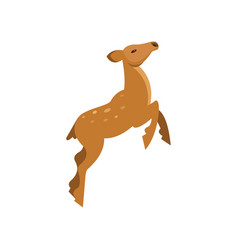 Graceful spotted fallow roe deer jumping wild vector