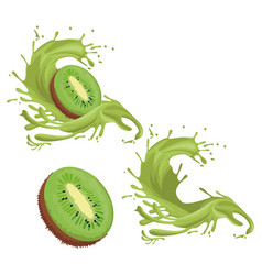 Kiwi fruit splash vector