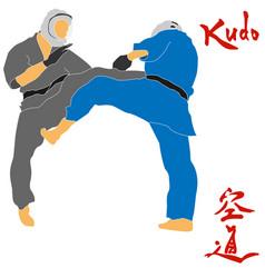 Kudo martial arts fighters vector