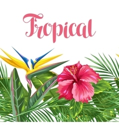 Seamless border with tropical leaves and flowers vector image