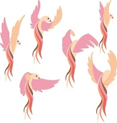set pink bird vector image