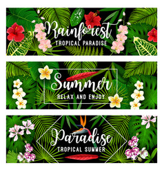 summer tropical vacation and holiday banner vector image