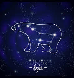 ursa major constellation vector image