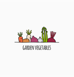vegetable linear logo garden vegetables on white vector image