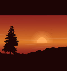 silhouette of spruce on lake at sunset vector image