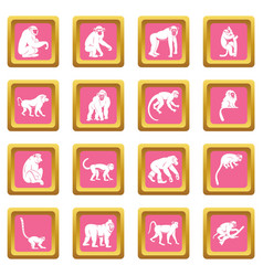 monkey types icons pink vector image vector image