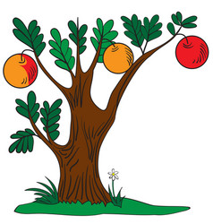tree with apples vector image