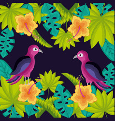 tropical natural leaves vector image