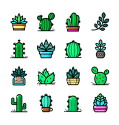 cactuses icons set vector image