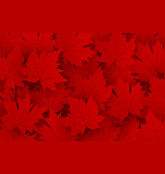 canada day design red maple leaves background vector image