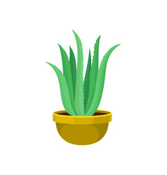 Cartoon houseplant house plant on white vector