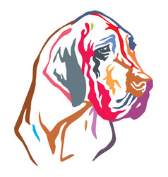 colorful decorative portrait of dog great dane vector image